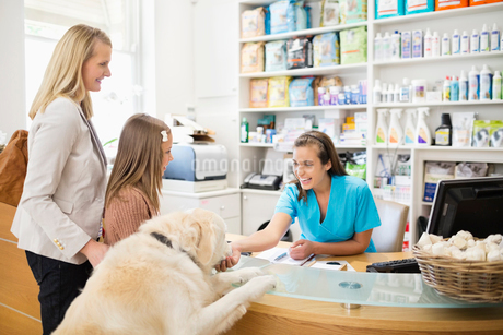Receptionist greeting dog in vet's surgeryの写真素材 [FYI02148644]