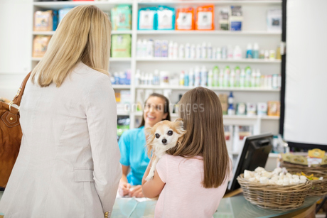 Owner bringing dog to vet's surgeryの写真素材 [FYI02148764]