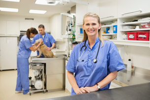 Smiling veterinarian standing in vet's surgeryの写真素材 [FYI02148933]