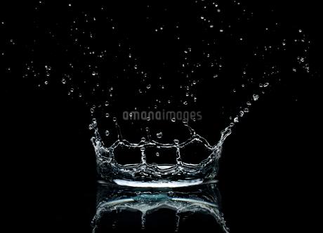 Close up of splashing water dropletの写真素材 [FYI02149692]