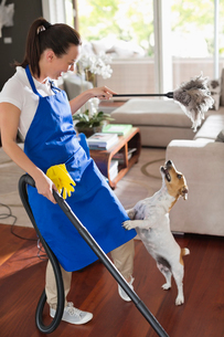 Maid playing with dog in living roomの写真素材 [FYI02150295]