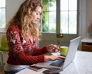 Woman shopping on laptopの写真素材 [FYI02151068]