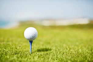 Golf ball on teeの写真素材 [FYI02153917]