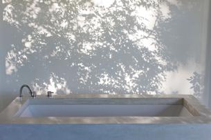 Shadows of trees on curtain behind bathtubの写真素材 [FYI02154037]