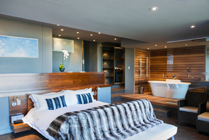 Bed and bathtub in modern master bedroomの写真素材 [FYI02154234]