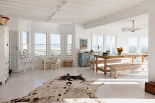 Animal skin rug in sunny dining roomの写真素材 [FYI02154776]