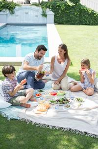 Family enjoying picnic in backyardの写真素材 [FYI02154794]