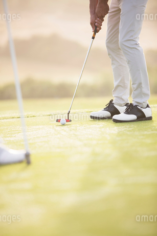 Man putting on golf courseの写真素材 [FYI02155700]