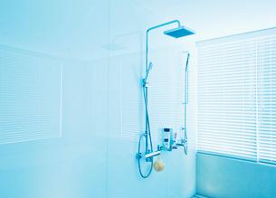 Square shower head in modern bathroomの写真素材 [FYI02156012]