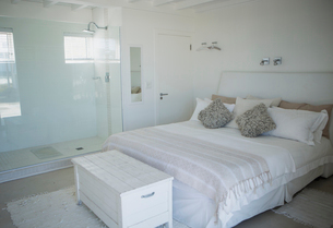 Bed, shower and trunk in modern bedroomの写真素材 [FYI02157182]
