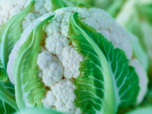 Extreme close up of raw cauliflower headの写真素材 [FYI02157212]