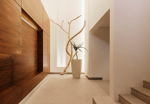 Entrance in modern houseの写真素材 [FYI02157567]