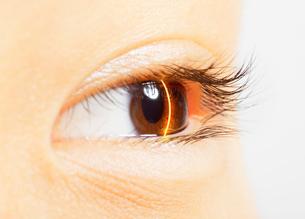 Extreme close up of laser scanning brown eyeの写真素材 [FYI02157664]