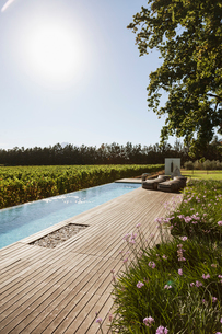 Luxury lap pool overlooking vineyardの写真素材 [FYI02158289]
