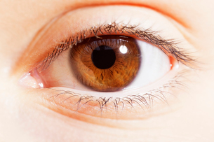Extreme close up of brown eyeの写真素材 [FYI02158393]