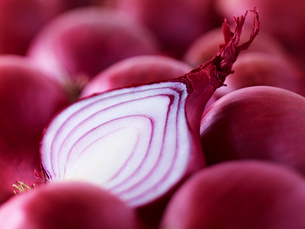 Extreme close up of raw sliced red onionの写真素材 [FYI02158489]