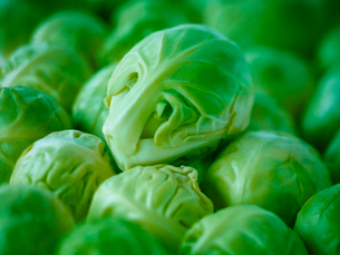 Extreme close up of raw brussels sproutsの写真素材 [FYI02159017]