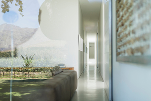 Glass walls of modern house overlooking vineyardの写真素材 [FYI02159105]