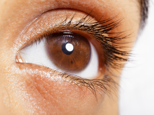Extreme close up of brown eyeの写真素材 [FYI02159285]