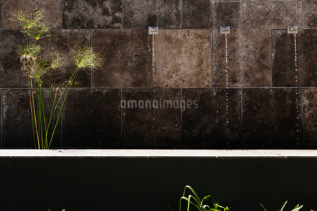 Water feature in stone wallの写真素材 [FYI02159349]
