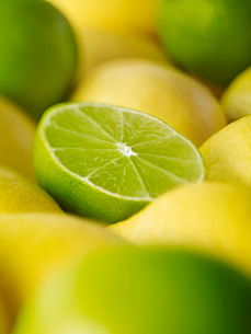 Extreme close up of sliced lime among lemonsの写真素材 [FYI02159414]