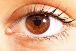 Extreme close up of brown eyesの写真素材 [FYI02159800]