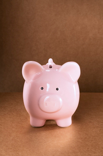 Close up of piggy bank on counterの写真素材 [FYI02161081]