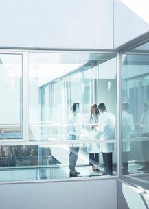 Doctors and administrator in office corridorの写真素材 [FYI02161574]
