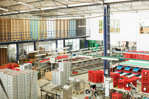 View of food processing plantの写真素材 [FYI02161839]