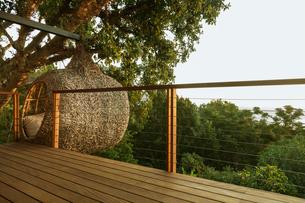 Nest tree house beyond wood deckの写真素材 [FYI02162003]