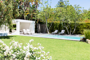Swimming pool and backyard of modern houseの写真素材 [FYI02162368]