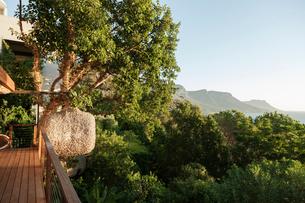 Scenic view of mountains through trees off balconyの写真素材 [FYI02162580]