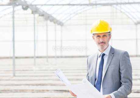 Portrait of confident architect with blueprint in greenhouseの写真素材 [FYI02162596]