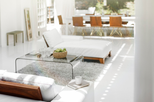Sofas, coffee table and rug in modern living roomの写真素材 [FYI02162644]