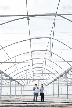 Architect and businesswoman reviewing blueprint in empty greenhouseの写真素材 [FYI02163018]
