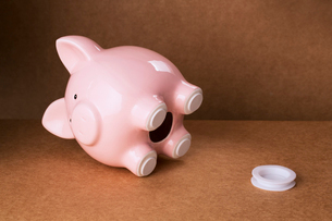 Empty piggy bank with stopper on counterの写真素材 [FYI02163173]