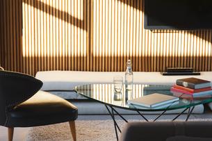 Window casting shadows in modern living roomの写真素材 [FYI02163269]