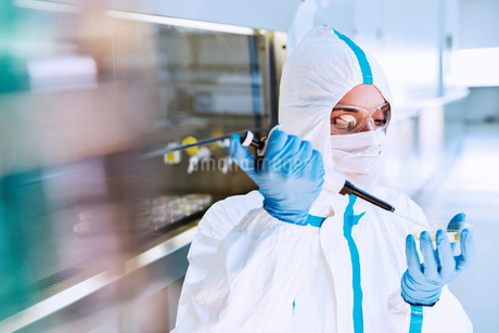 Scientist in clean suit pipetting sample into Petri dish in laboratoryの写真素材 [FYI02163695]