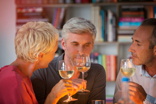 Older friends tasting white wineの写真素材 [FYI02163916]