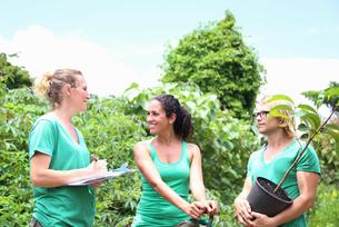 People with tree seedling in community gardenの写真素材 [FYI02164933]