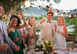 Young couple and guests toasting with champagne during wedding reception in domestic gardenの写真素材 [FYI02166686]