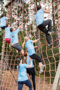 People climbing net on boot camp obstacle courseの写真素材 [FYI02166767]