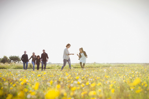Multi-generation family walking in sunny meadow with wildflowersの写真素材 [FYI02167066]