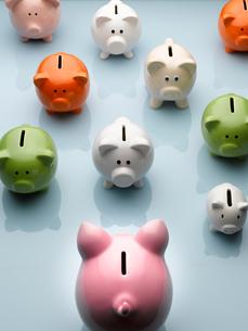 Large piggy bank facing smaller multicolor piggy banks still lifeの写真素材 [FYI02167070]
