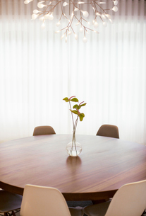 Modern chandelier over anthurium bouquet on round dining tableの写真素材 [FYI02167137]