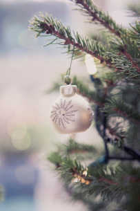Silver ornament hanging on Christmas treeの写真素材 [FYI02167778]