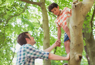 Father helping son climbing treeの写真素材 [FYI02168010]
