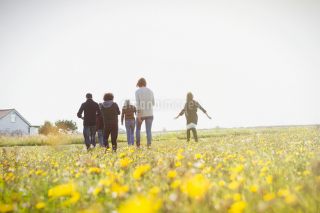 Multi-generation family walking in sunny meadow with wildflowersの写真素材 [FYI02168054]