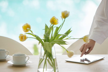 Yellow tulip bouquet on table at poolsideの写真素材 [FYI02168132]