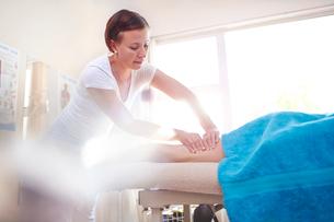 Masseuse massaging woman's legの写真素材 [FYI02168625]